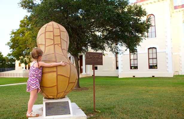 Peanut on courthouse lawn in Floresville